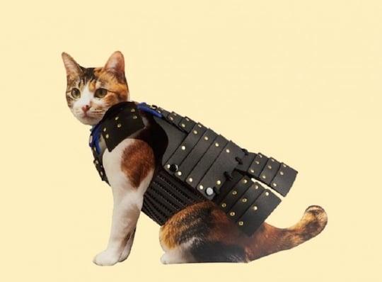 Samurai Dog Armor For Sale