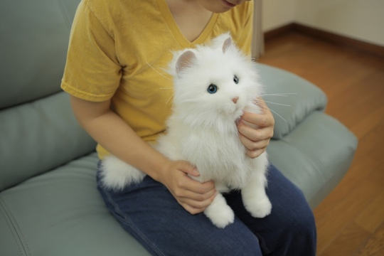 Yume Neko Dream Cat Premium Robotic Pet