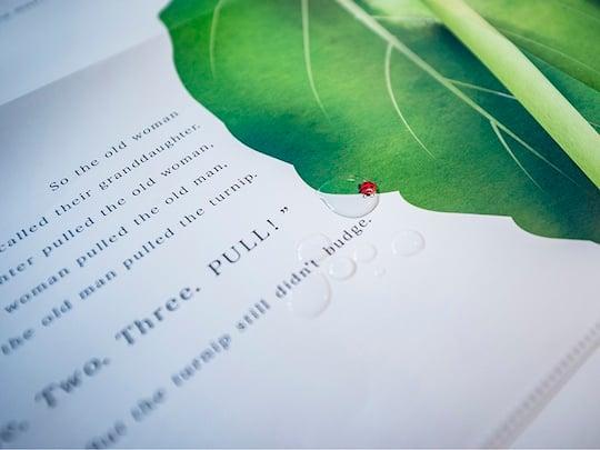 Big Book: The Giant Turnip