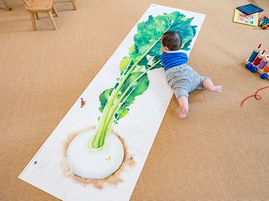 Big Book: The Giant Turnip
