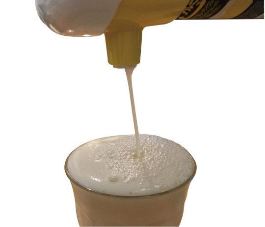 Beer Can Foamer