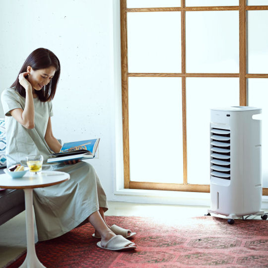 Nagomi Hot and Cold Air Fan-Humidifier