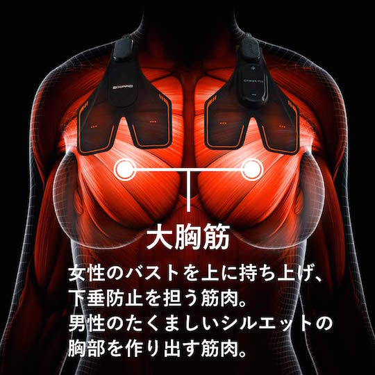 SixPad Chest Fit Training Gear