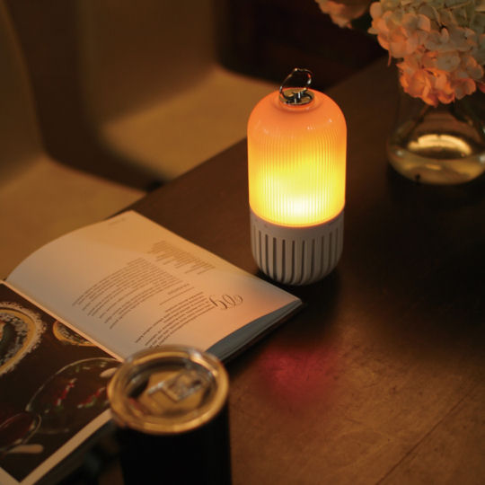 Spice of Life Capsule Light and Speaker
