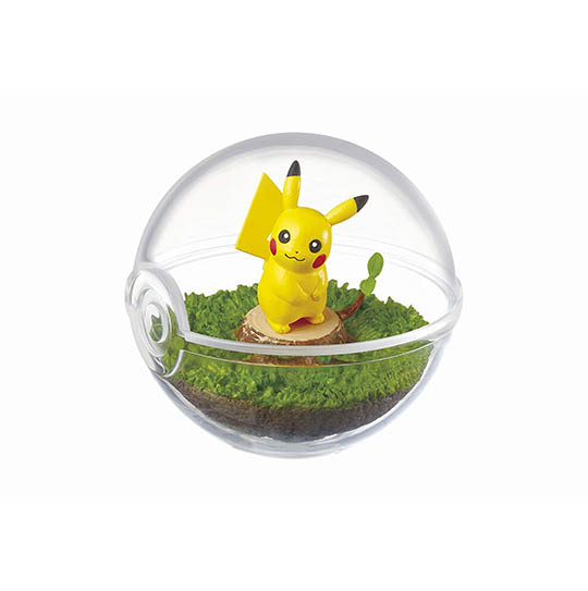 Pokemon Terrarium Collection (Pack of 6)