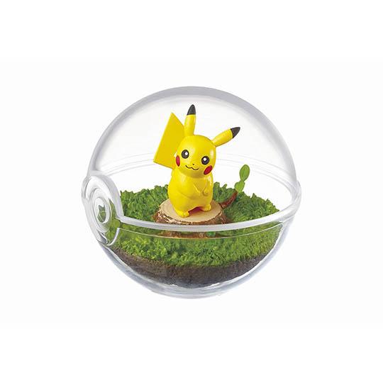 Pokemon Terrarium Collection (Pack of 6)
