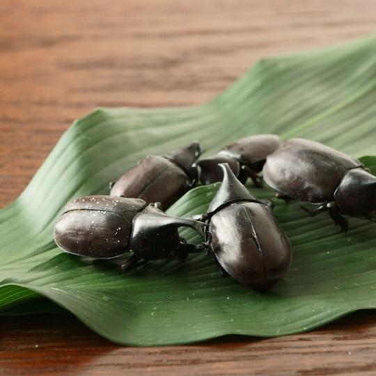 Takeo Tokyo Edible Japanese Rhinoceros Beetle Snack