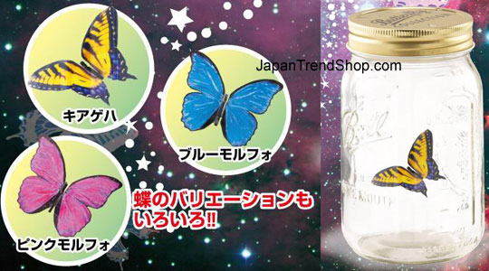 ChouChou Electric Butterfly - Japan Original
