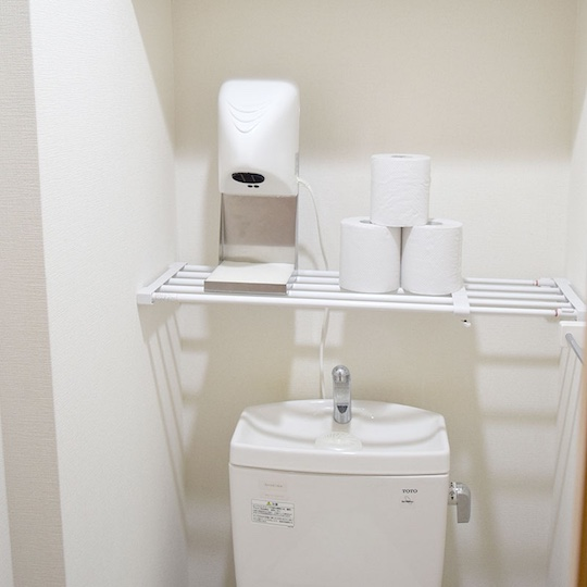 Thanko Compact Hand Dryer for Home