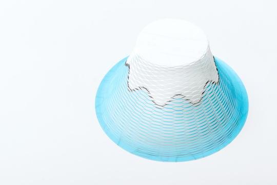 Airvase Mt Fuji