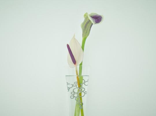 Plant Jewel Flower Arrangement Decorative Stand