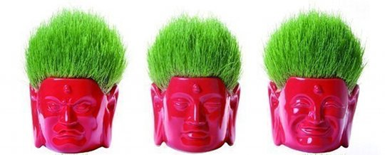 Buddha Hair Salon Flower Pot