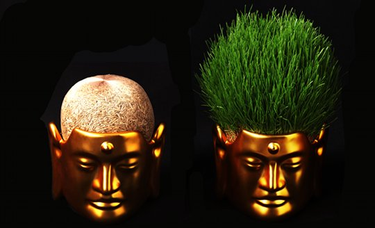 Buddha Hair Salon Flower Pot Small
