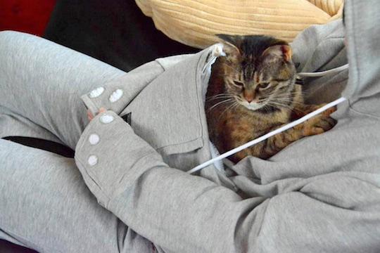 Mewgaroo Hoodie Pet Pouch Sweatshirt (White)