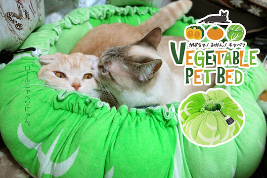 Vegetable Pet Bed