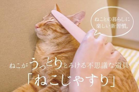 Neko-jasuri Cat Groomer