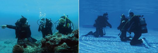 Casio Logosease Underwater Two-Way Radio