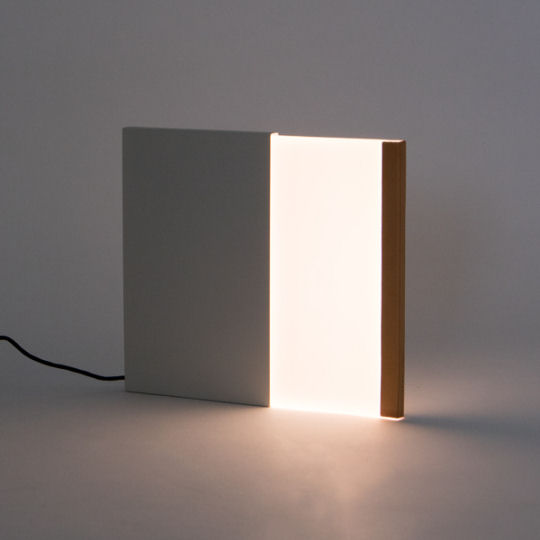 Night Book Light