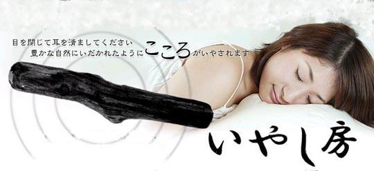 Iyashi Bo Healing Log by Sega Toys