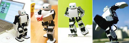 PLEN Robot - Desktop Hobby from Akazawa